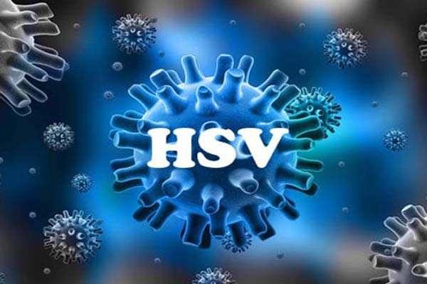 virus hsv